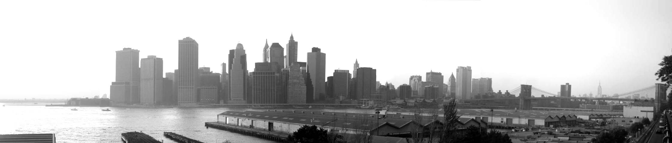 panoramica de NYC