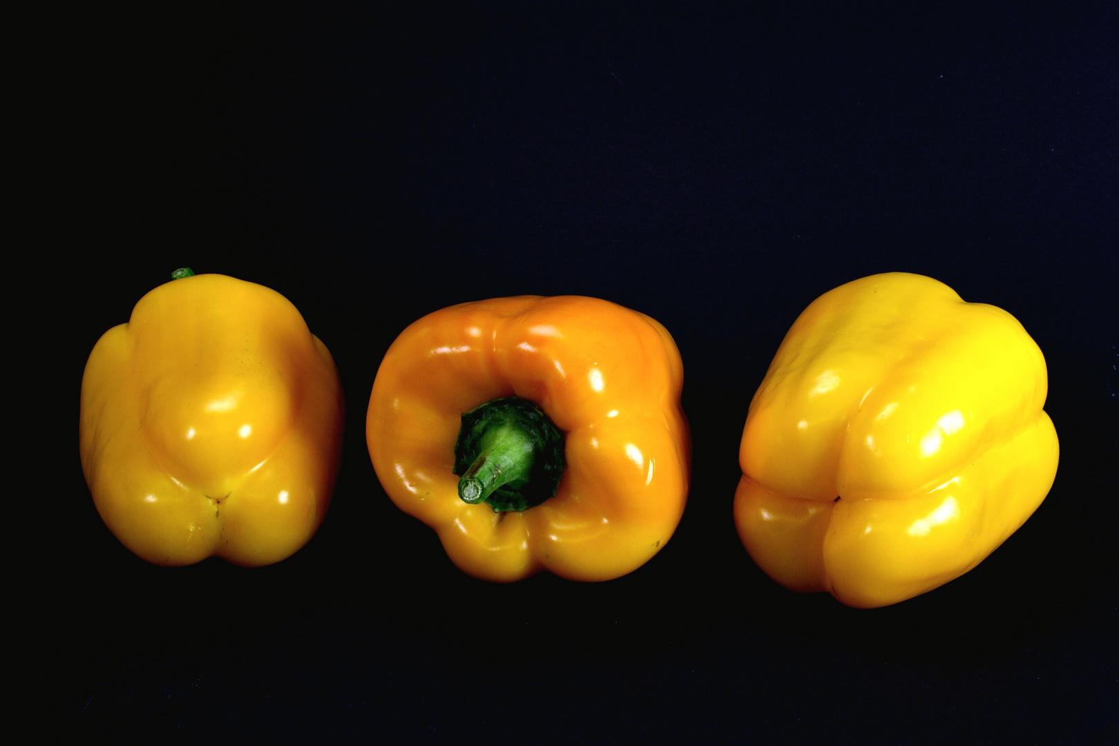 Paprika g