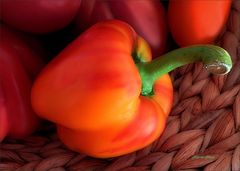 Paprika mit Frühlingslook