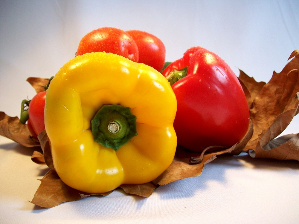 Paprika trifft Tomate im Wald