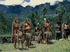Papuafrauen im Alltag
