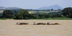 Papyrusboote auf dem Tanasee