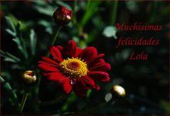 Para Lolita Cecilia