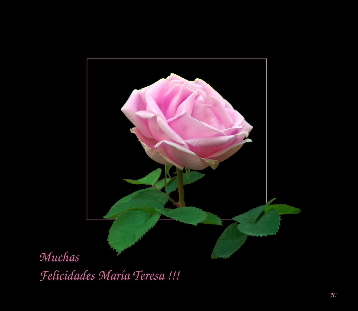 Para M. Teresa Pascual