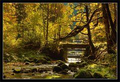 Paradies im Jura