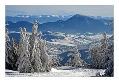 Paradis de neige