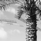 Paradise under construction