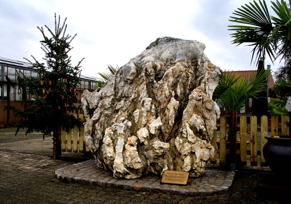 Paragneise aus Sedimentgestein