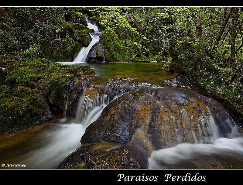 Paraísos Perdidos II dedicada a Alejandra Terranova