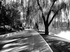 Parc à Beijing