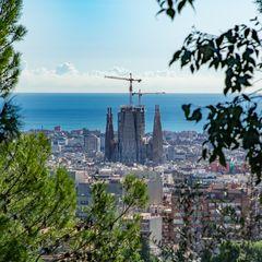 Parc Güell V - Barcelona