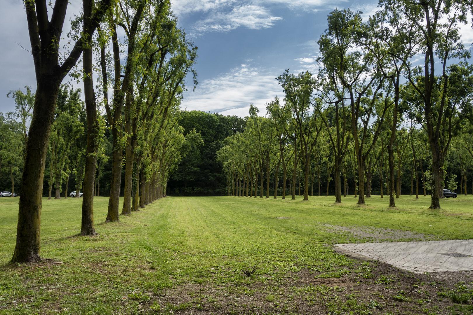 Parcheggio del parco, Monza