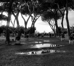 Parco degli Aranci