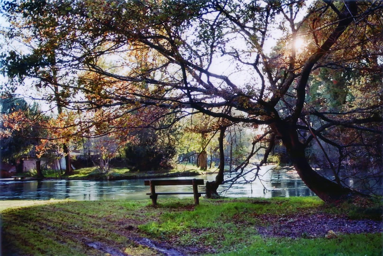 Parco del fiume Stella (2) - Ariis (Udine)
