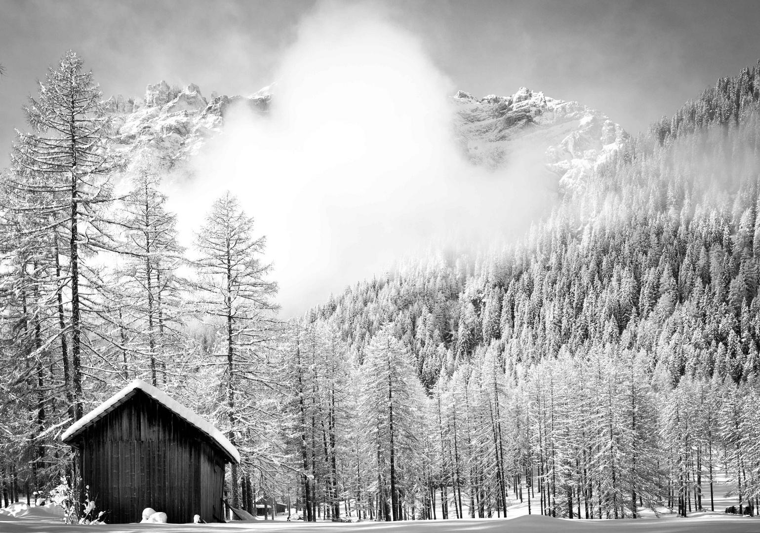 Parco Naturale Dolomiti Sesto 3
