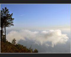 Parco Nazionale delle Cinque Terre II