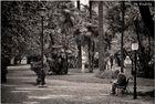 Parco Villa Borghese