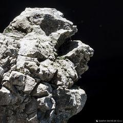 Pareidolia in Rock 20-21