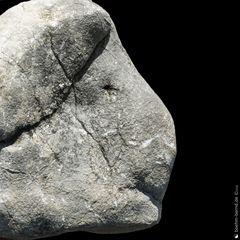 Pareidolia in Rock 20-23