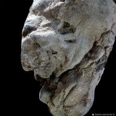 Pareidolia in Rock 20-25