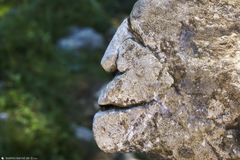 Pareidolia in Rock 20/11