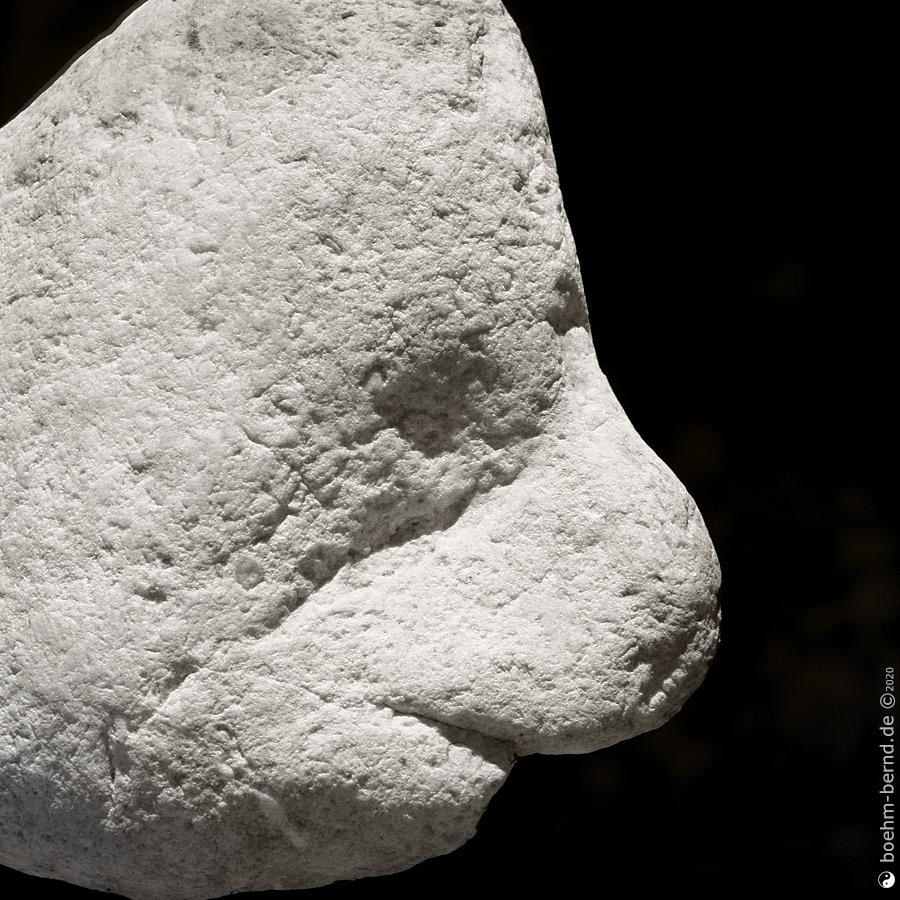 Pareidolia in Rock 20/8