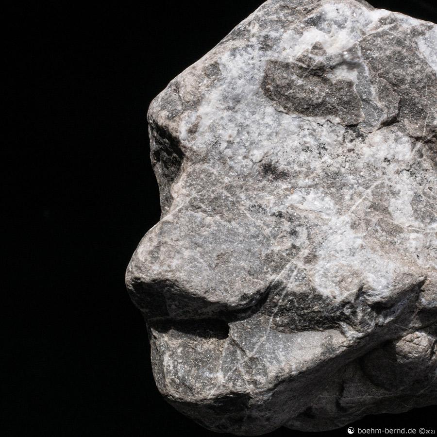 Pareidolia in Rock 21-2