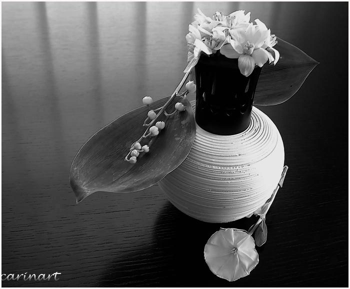 Parfums de mai