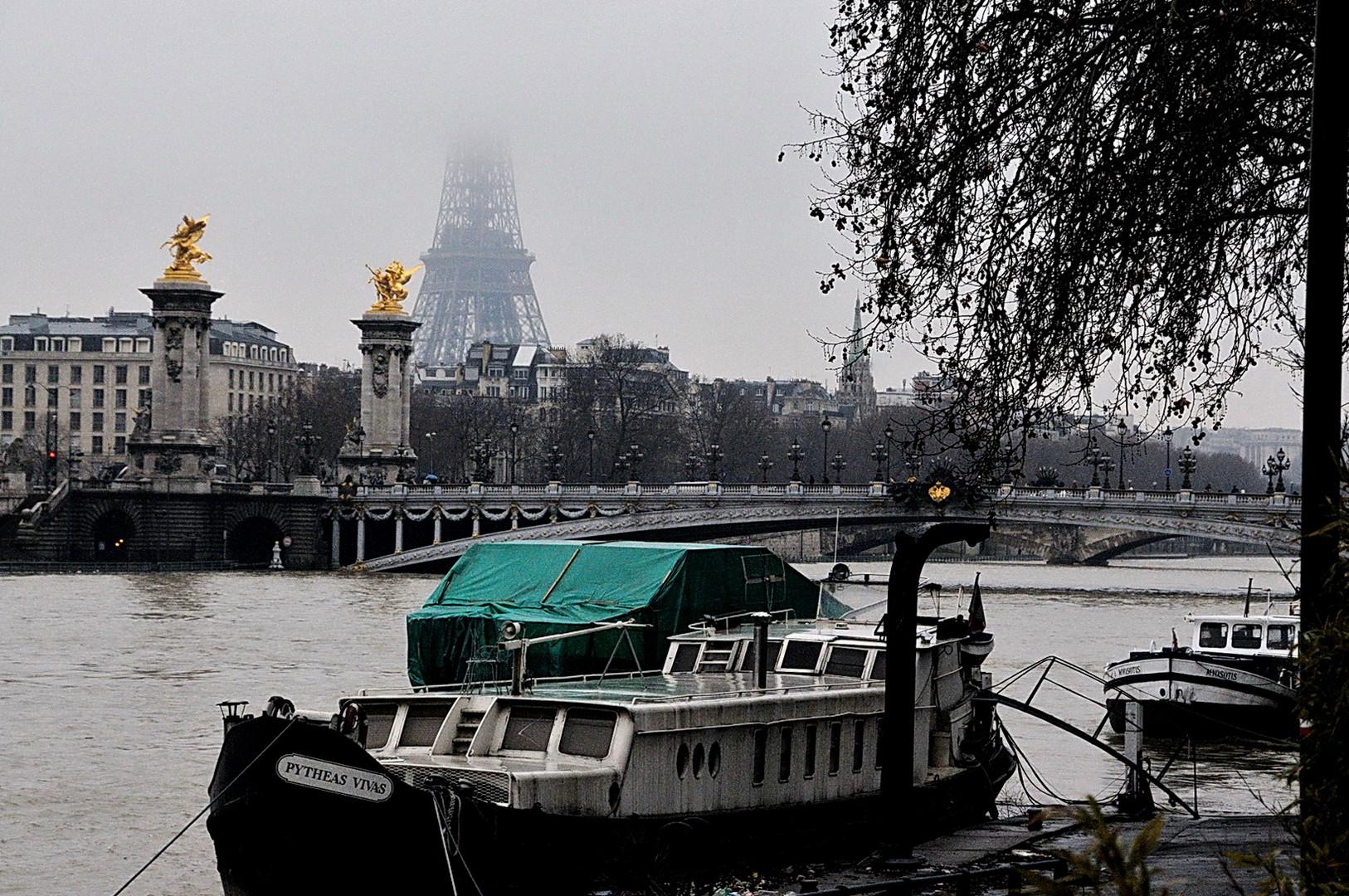 Paris 28 Décembre 2010 (10)