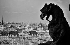Paris aus dem Sitz Lazifers. ..120_2613