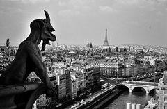 Paris aus der Sicht des Teufels.      .120_2612