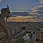 Paris - Blick von Notre Dame zum Eiffelturm