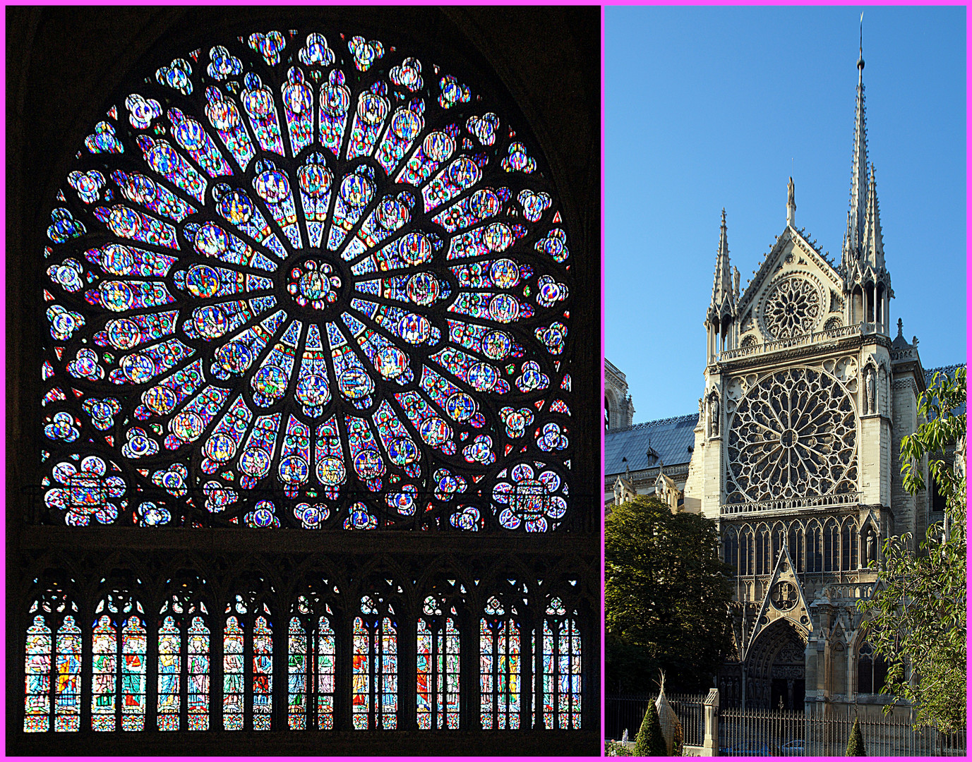 Paris: « La vie en rose »