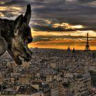 Paris ... Notre Dame