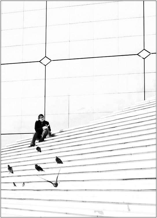 Paris - oiseau a La Défense ....