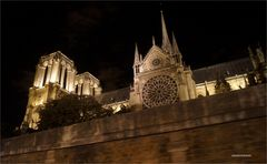PARIS Seine-Rundfahrt vorbei an Notre Dame