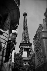 Pariser Decoration