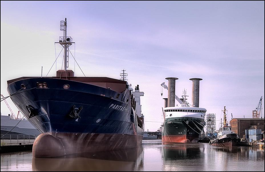 Paritas-H & E-Ship 1