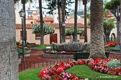 Park in Puerto de la Cruz
