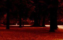 Park in Rot