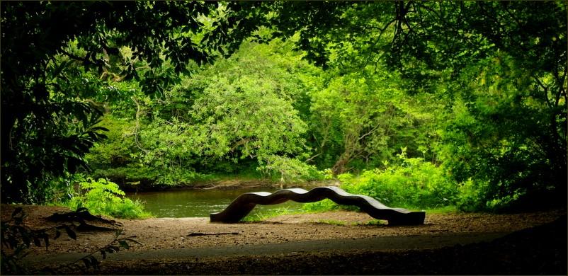 park - Inverness ( Scotland )