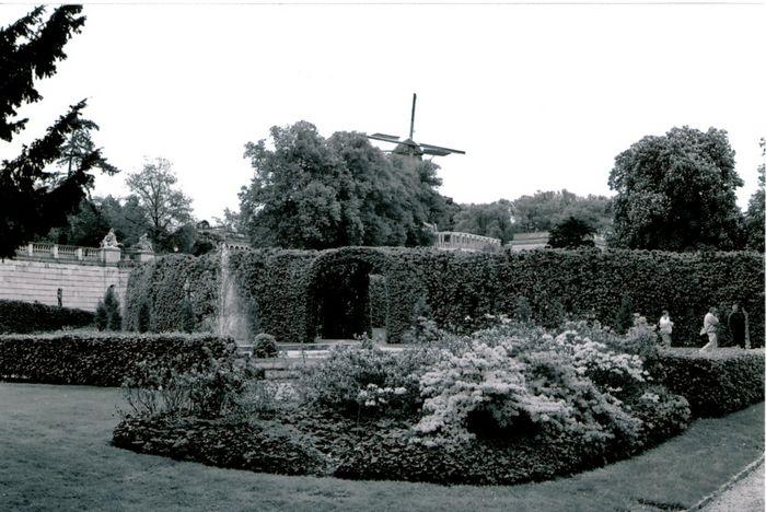 Parkidylle - Sanssouci