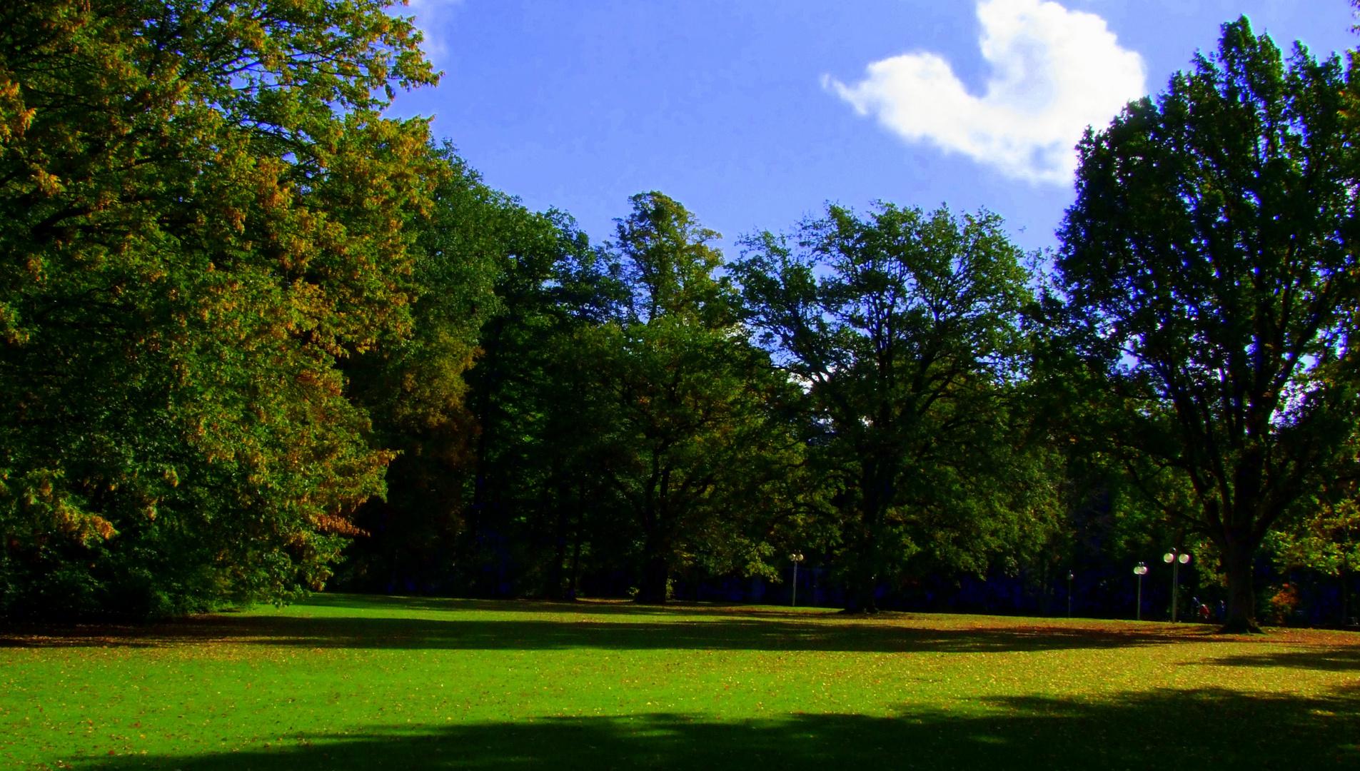 Parklandschaft im Oktober