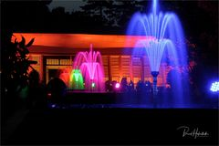 Parknächte Lichtfestival Schloß Dyck ....
