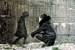 Parler à un mur........