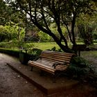 Parque de Lota III