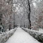 Parque del Retiro nevado (Madrid)