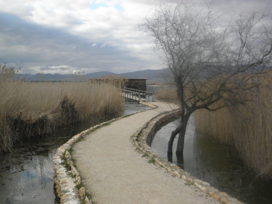 Parque nacional de las Tablas de Daimiel - National Park 'Las Tablas de Daimiel' (Spain, La Mancha)