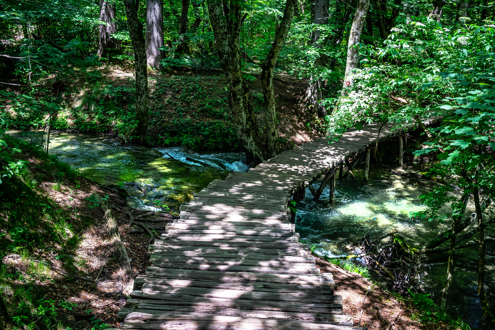 Parque Nacional Plitvice - VIII