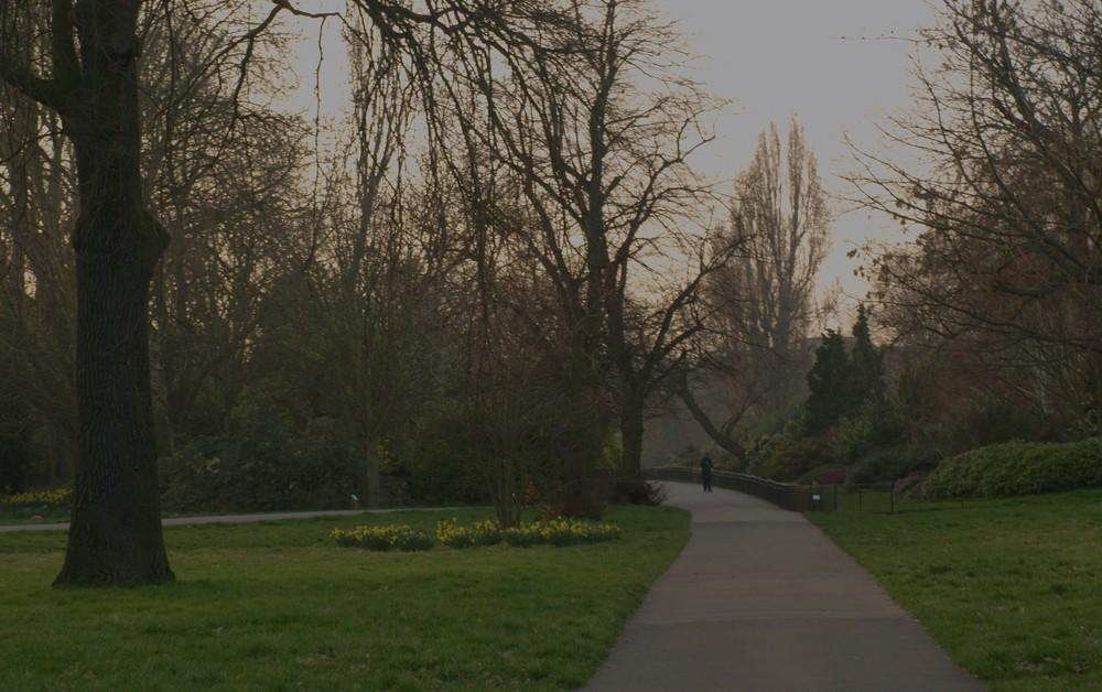 Parque Regent´s Londres 10...